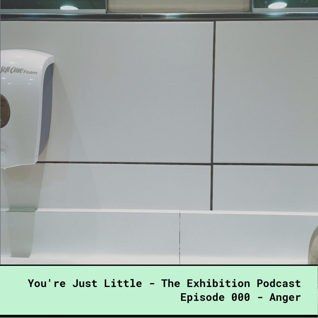 The You're Just Little Exhibition Podcast - Episode 000 - Anger. Photo shows an sink area in the toilets, and the mirror above head level, excluding me from checking my appearance, because of my dwarfism.